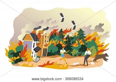 Burning Forests Natural Calamity And Emergency Vector