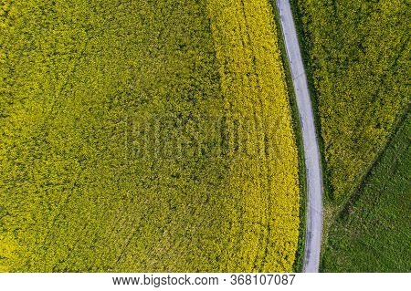 Agriculture Theme. Aerial Vista Of Countryside Farmlands With Rapeseed Field And Road.