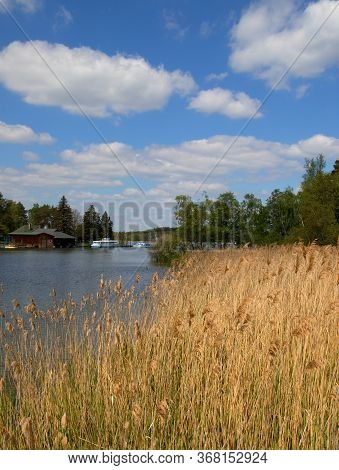 Reflections On The Surface Of Macha Lake, Czech Republic, Aquatic Plants, Blue Sky With White Clouds
