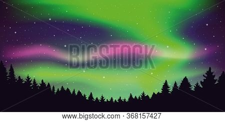 Aurora Borealis Beautiful Polar Lights In Stary Sky In Forest Vector Illustration Eps10