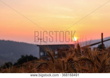 Majestic Sunset In The Mountains In Chiang Mai, Thailand. The Mountain Scenery View