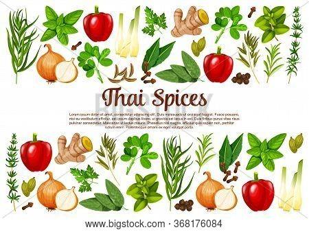 Thai , Herbs, Seasonings Vector Herbal Cooking Ingredients. Paprika Or Bell Pepper, Lemongrass And G