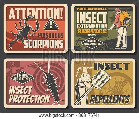 Insects Extermination Service, Pest Control And House Disinsection. Vector Centipede, Scorpion And S