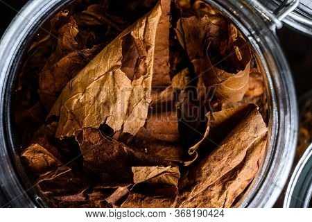 Close-up Macro Cigar And Pile Of Tobacco Leaves Of Dried Tobacco In Glass Jars On Rustic Wood Dark T