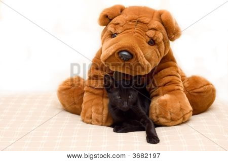 Kitten curled up with large soft toy Sharpei dog. poster