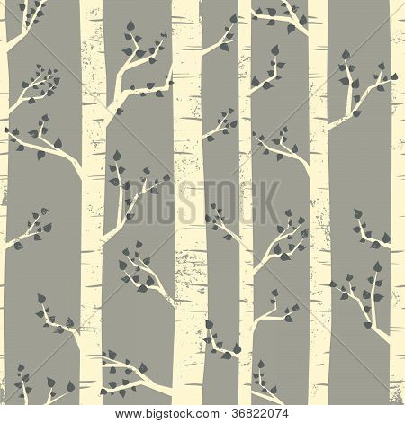 Birch Forest Background