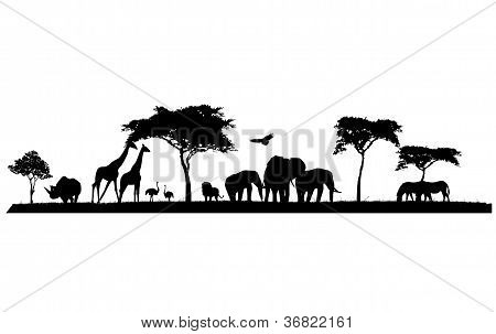 silhouette of safari animal wildlife
