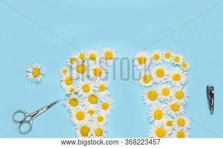 Creative Concept Of Pedicure: Feet Laid Out Of Chamomile, Scissors, Forceps, Pumice. Personal Care,