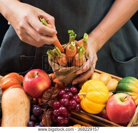 Fall Harvest Cornucopia. Farmer With Fruit And Vegetable In Autumn Season. Thanksgiving Day Concept.