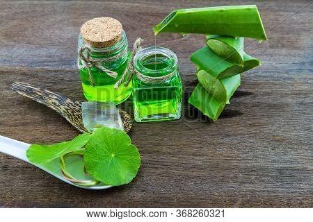 Slice Aloe Vera (aloe Barbadensis Mill.,star Cactus,  Aloin, Jafferabad Or Barbados)   Aloe Vera Ess