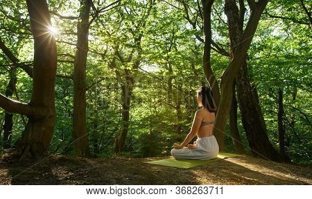 Shot Of One Young Women Doing Yoga In The Green Sunrise Forest. Fitness People Sitting On The Exerci