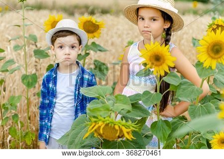 Little Girl With A Boy In Hats Stand In A Field Near The Sunflowers.