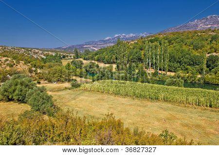 Green landscape of Zrmanja river valley under Velebit mountain Dalmatia Croatia poster