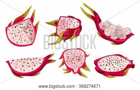 Halved Pitaya Or Dragon Fruit Covered With Leathery Leafy Skin Vector Set