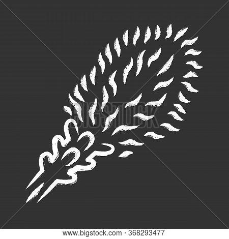 Liatris Chalk Icon. Blazing Star Blooming Flower. Dwarf Gayfeather Garden Plant. Kobold. Wildflower.