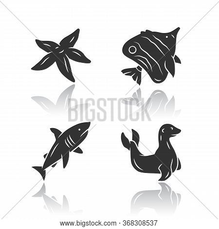 Sea Animals Drop Shadow Black Glyph Icons Set. Starfish, Butterflyfish, Seal. Ocean Wildlife. Aquati