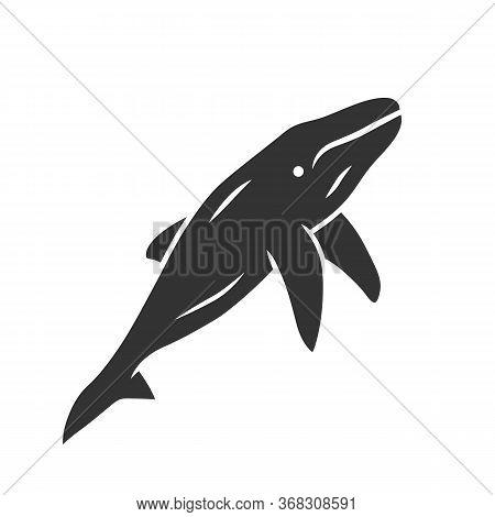 Whale Glyph Icon. Marine Mammal. Underwater World Inhabitant. Ocean Predator. Aquatic Animal, Wildli