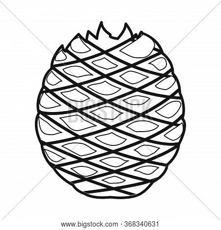 Isolated Object Of Agave And Tequila Logo. Web Element Of Agave And Blue Stock Vector Illustration.