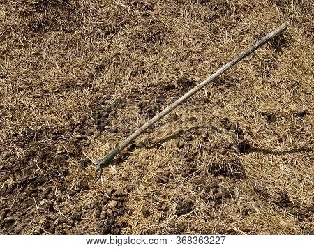 Dung With Pitchfork, Dung With Agriculture Tool