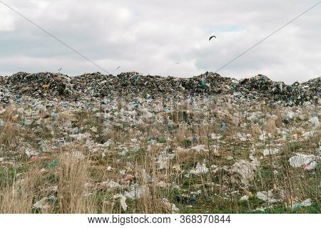City Dump. A Huge Garbage Dump. Birds Circling Over The Garbage