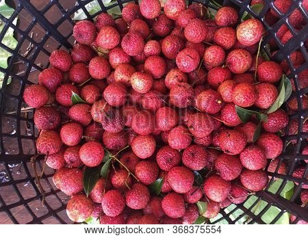 fresh, ripe litchi fruit in a box. tropical fruits in container in market, shop or store