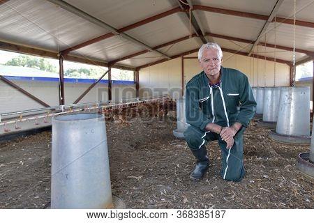Portrait of breeder standing in henhouse