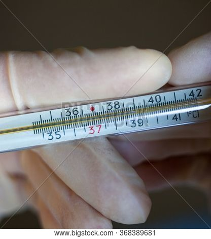 Hands In Medical Gloves Holding Medical Mercury-in-glass Thermometer. Measuring A Temperature. High