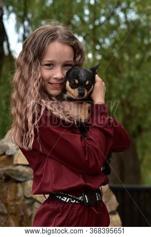 Little Girl With A Chihuahua. Girl Holding Chihuahua. Girl With Her Pet In Her Arms. Chihuahua In Bl