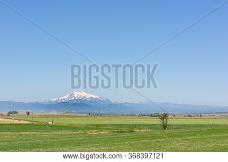 Mount Jefferson Snowcapped Mountain Range Appears On The Horizon, Across Oregon's Countryside Wheat