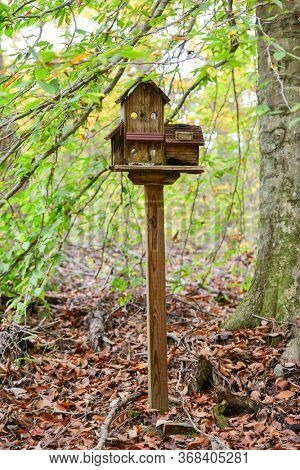 Old bird house in the forest in autumn foliage