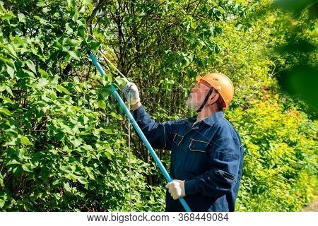 Male Farmer Gardener In The Helmet Trims The Trees In The Garden. Protection From Falling Down The B