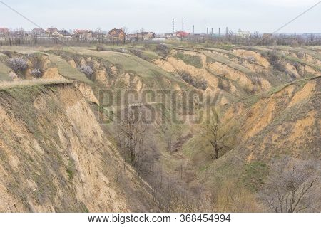 March Landscape With Soil Erosion And Flowering Apricot Trees In Loamy Ravines Near Dnipro City, Ukr