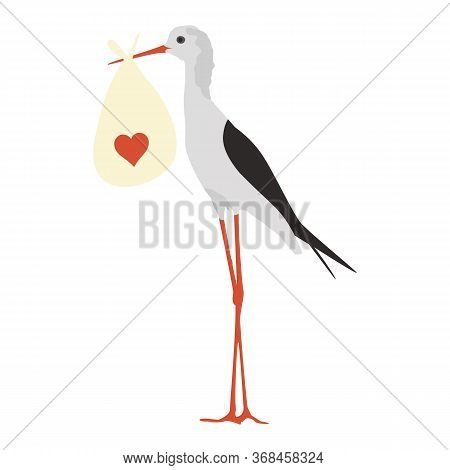 Standing White Stork Vector Illustration In Flat Style Isolated On White Background. Cartoon Bird Br