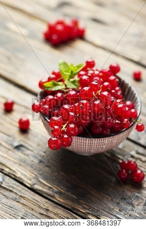 Fresh Red Currant With Mint