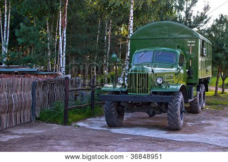 World War II military truck, shiny and as new. Birch forest