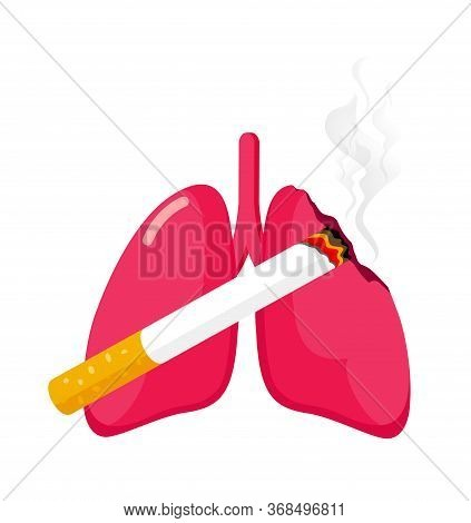 Damaged Lung With Cigarette. Stop Smoking Concept. World No Tobacco Day. Smoking Is Harmful To Human
