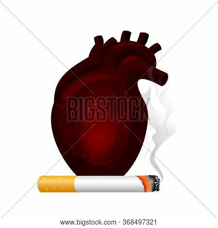 Stop Smoking, World No Tobacco Day. Smoking Is Harmful To Human Heart. Resulting In Organ Damage And