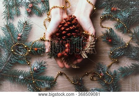 Christmas Background With Hands Holding Fir Cone, Around Fir Branches, Rowan Berries And In Snow. Wi
