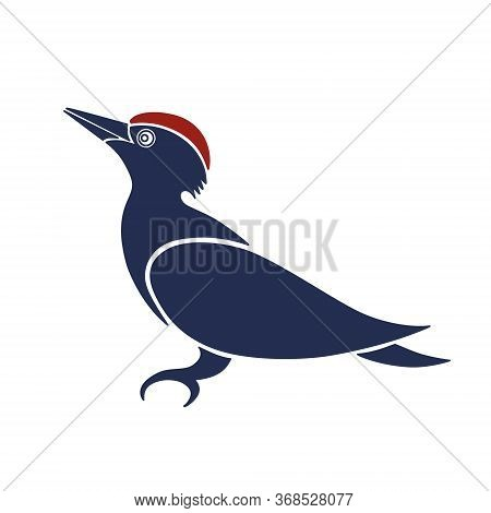 Stylized Blue And Red Woodpecker Logo Template Isolated On White.