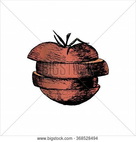 A Tomato. Sliced Red Tomato. Hand-drawn In Sketch Style. Isolated On A White. Vector Illustration