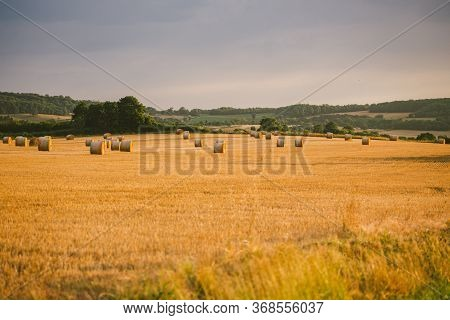 Bales Of Hay Outside In The Field In Burgundy. Golden Hay Bales In French Countryside. Harvested Fie