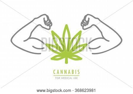 Strong Cannabis Leaf With Muscular Arms Vector Illustration Eps10