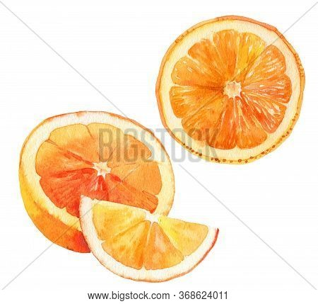 Watercolour Orange Fruit Illustration. Hand Drawn Orange. Fresh Orange Fruit. Bright And Fresh Illus
