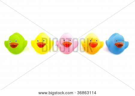 Colorful Ducklings