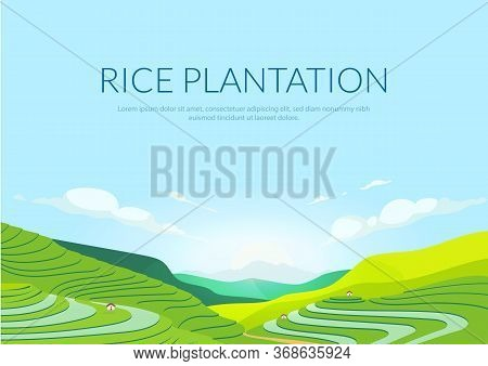 Terraced Plantation Poster Flat Vector Template. Chinese Rice Fields. Tea Plantations. Brochure, Boo