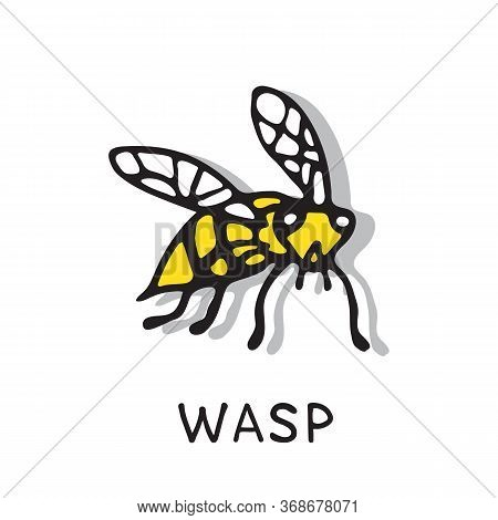 Hand Drawn Wasp Isolated On White Background. A Stinging Insect. Design Elements For Flyer, Leaflet,