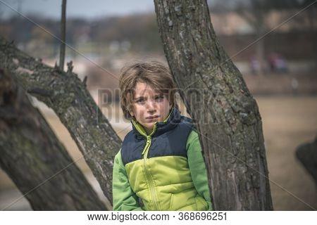 Outdoor Portrait Of A Boy On A Tree