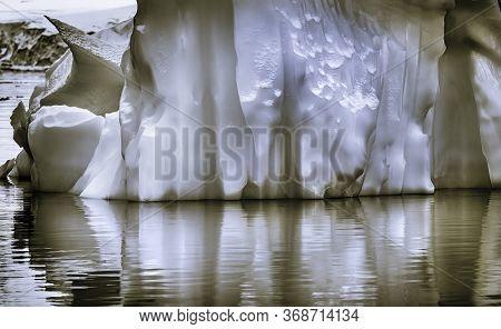 Black And White Floating Iceberg Reflection Paradise Bay Skintorp Cove Antarctic Peninsula Antarctic