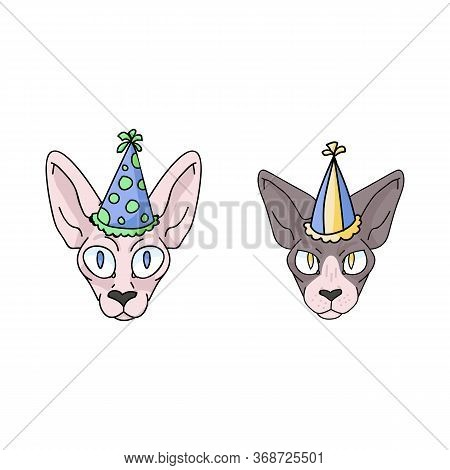 Cute Cartoon Sphynx Cat And Kitten Face With Party Hat Vector Clipart. Pedigree Exotic Breed For Cat
