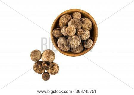 Mushroom Hygroscopic Earthstar Or False Earthstar Ior Barometer Earthstar In A Wooden Bowl On White